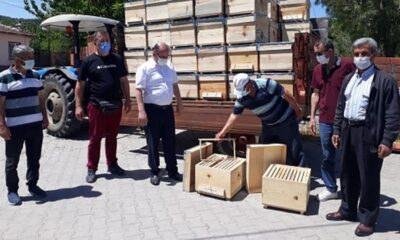 Susurluk'ta arı kovanı dağıtımı sürüyor