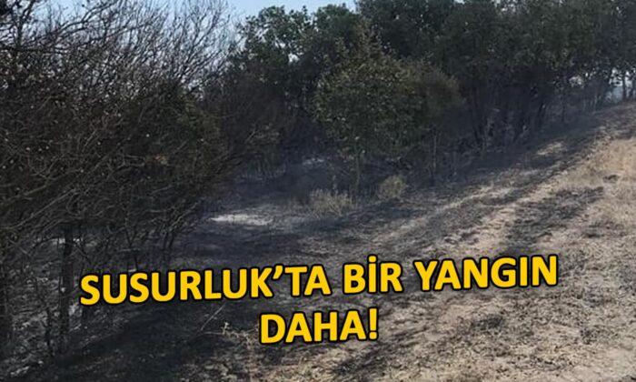 Susurluk'ta bir yangın daha!